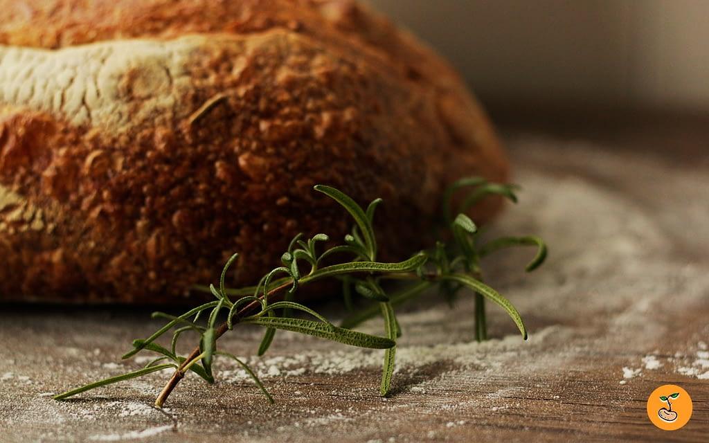 #14 – Pão de fermentação natural engorda? 3