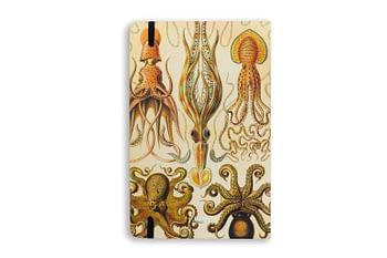 Handbook cefalópodes - Folk Books 1