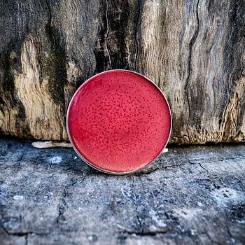 Lip Balm (Manteiga multifuncional) 15g 3